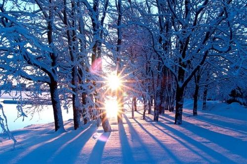 Poesia dos exclu dos haikai de inverno for Immagini inverno sfondi