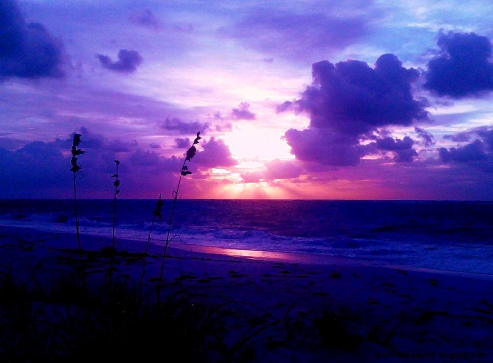 purple sunrise wallpaper zoom wallpapers