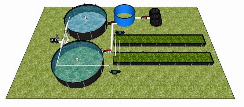 Bio entorno s c acuicultura for Precio de estanques de geomembrana para peces
