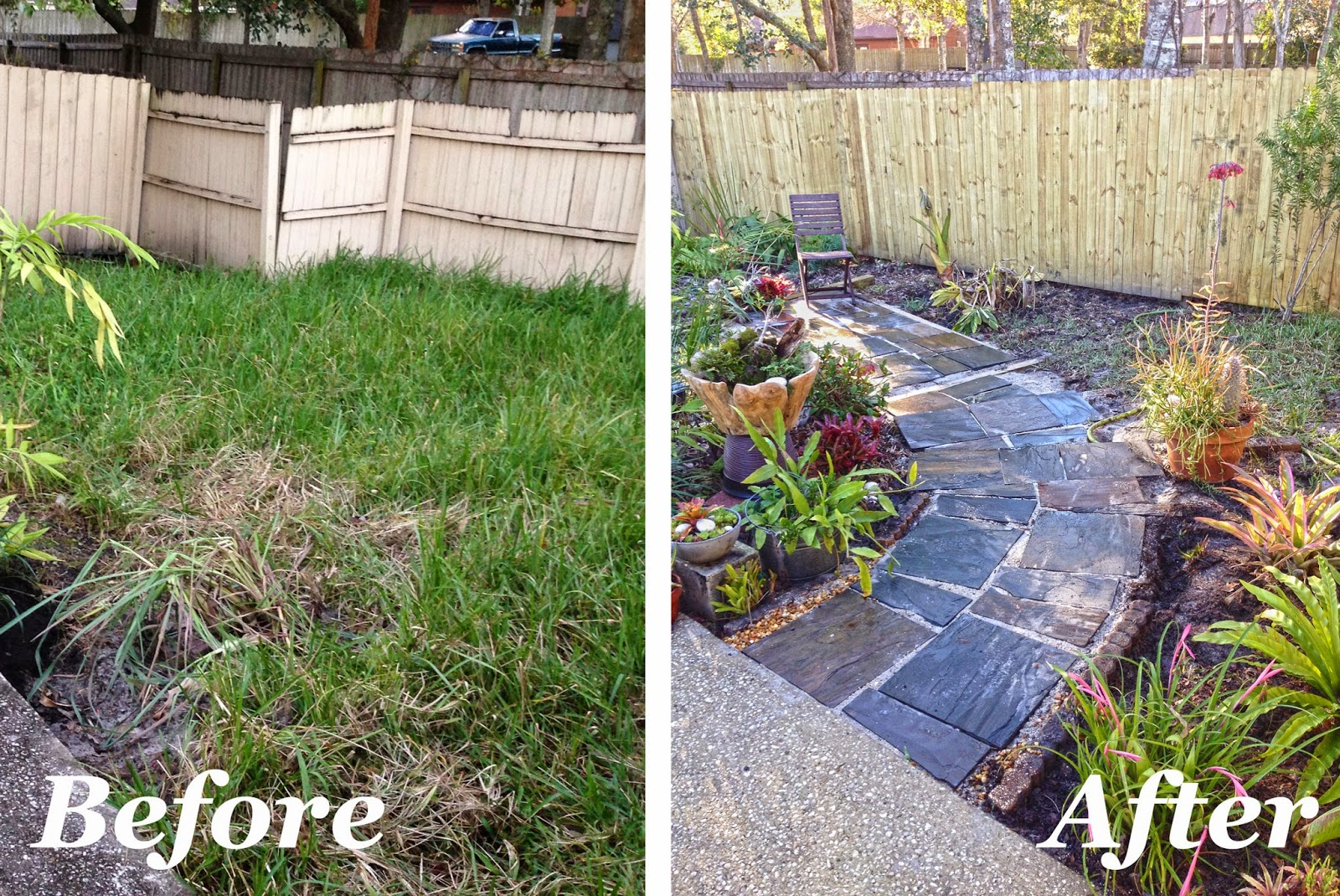 the rainforest garden before and after my slate path