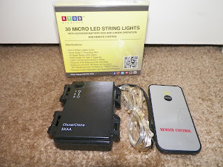 RTGS_30_LED_Micro_String_Lights.jpg