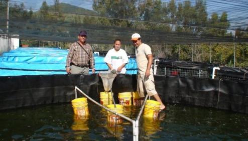 Ambientes de aprendizaje en piscicultura tecnologia piscicola Estanques para piscicultura