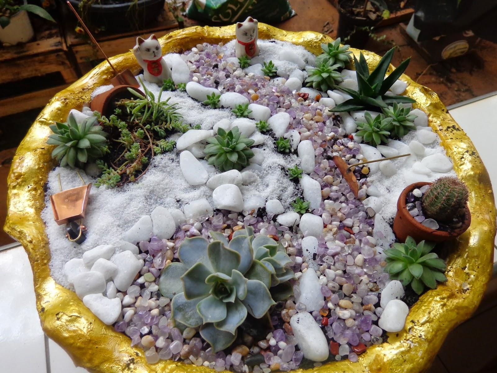 Mini-jardim de cactos e suculentas