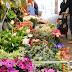 Marché d'Aligre - les fleurs