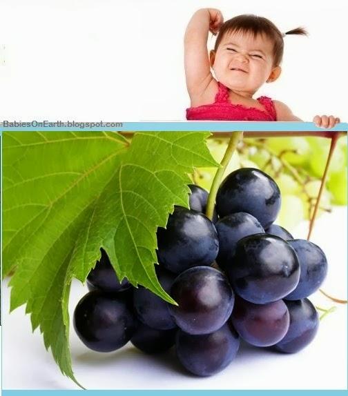 Baby Grape