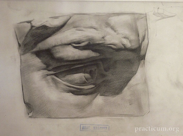 Figure Drawing Realism Classical Figure Drawing