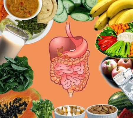 Food For Digestive Health