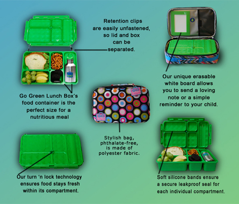 Go Green Lunch Box Review, bento school lunches