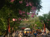 Hue Music Festival