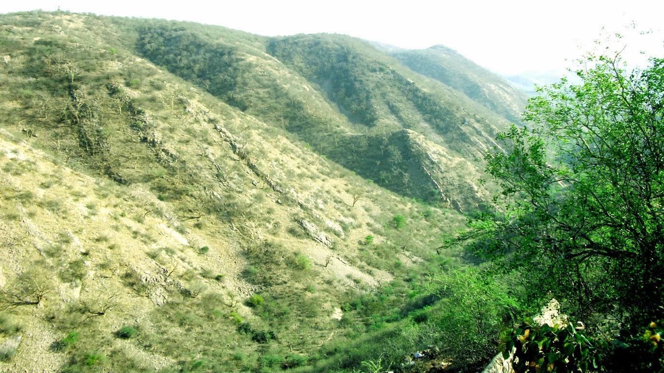Valley Hills Jaipur