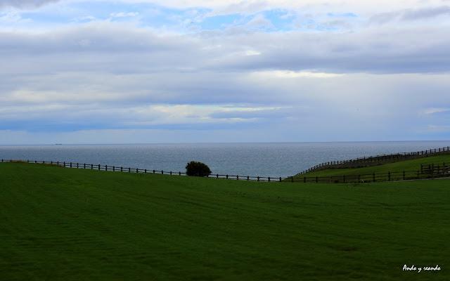 Paisajes de praderas verdes y mar azul en Navia
