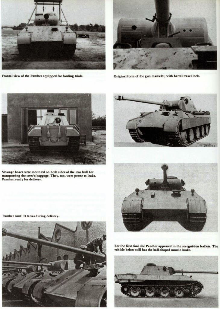 Axis Tanks and Combat Vehicles of World War II: PANTHER MODEL D