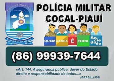 Polícia Militar Cocal-PI (86) 99939-7644