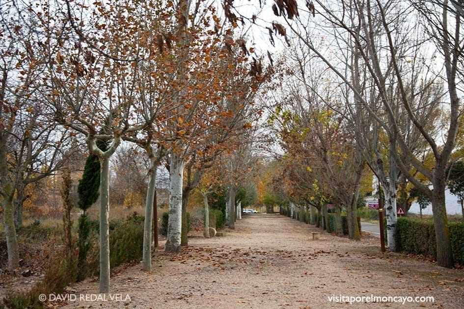 Veruela Vera de Moncayo Paseo de Bécquer Moncayo Senderismo Caminos del Alma