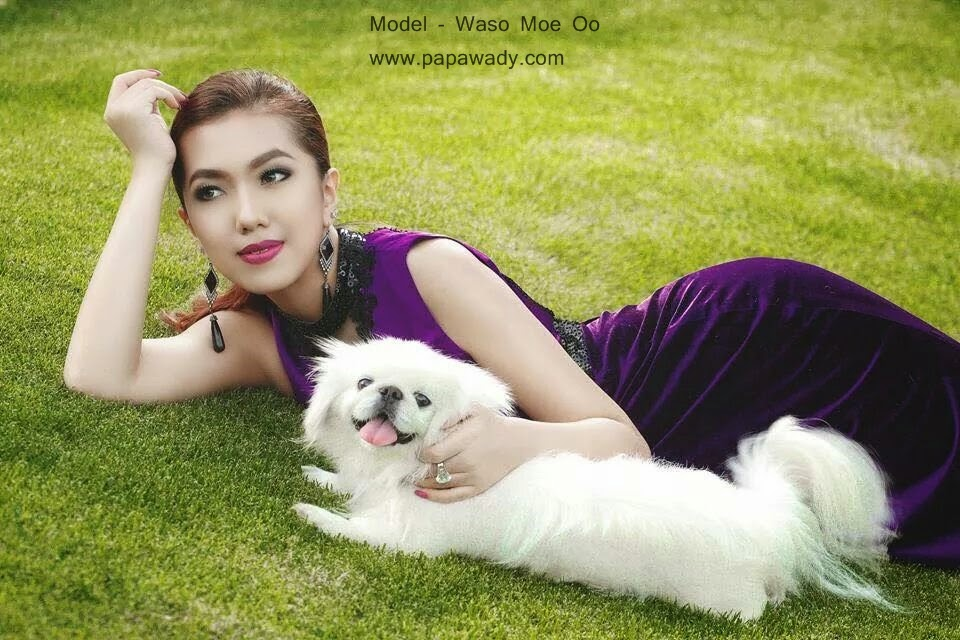 Waso Moe Oo Photoshoot with Kitty and Puppy
