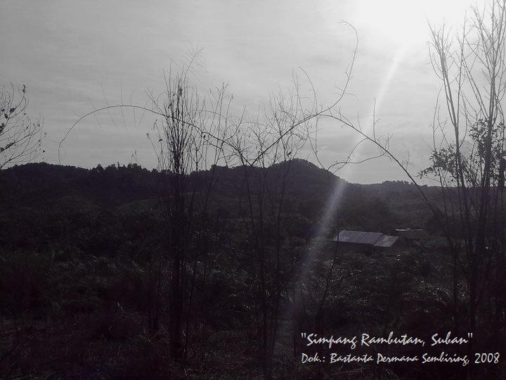 Simpang Rambutan, Suban, Jambi