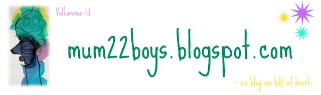 Mum 2 2 boys