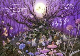 ♥ Curso de Conexion con los Seres Elementales ♥ Comienza el 17/11/2014