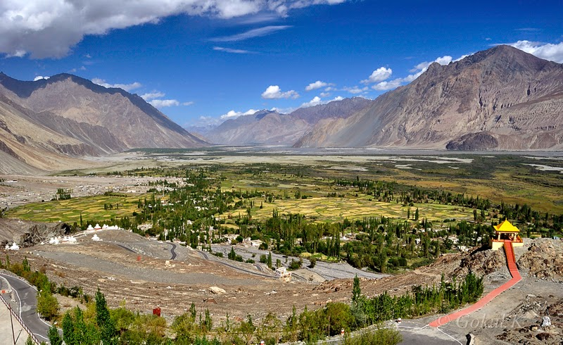 Image result for Nubra Valley ladakh