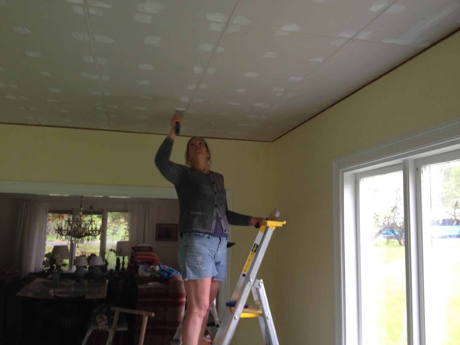 """Doktorsvillan """"solstrålen"""": nieuw plafond"""