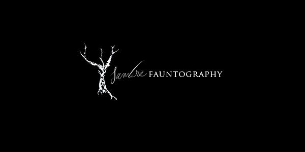 Ysambre Fauntography