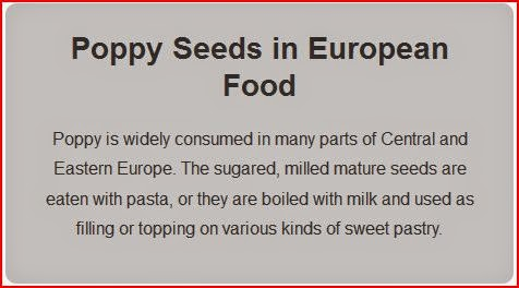 Poppy Seeds in European Food gray box