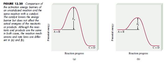 Laju reaksi asyik i katalis jadi penambahan katalis pada suatu reaksi kimia dapat menurunkan energy aktivasi reaksi sehingga reaksi berlangsung lebih cepat ccuart Image collections