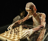 Anatomical Chess