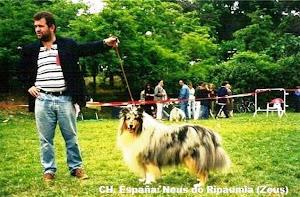 CH.Spain.2000 NEUS DO RIPAUMIA.Prop.Ana Veiga Piñeiro.