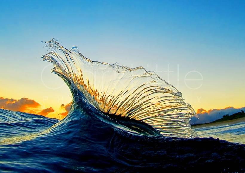 Amazing clark little photography in the sea amazing for Amazing ocean images