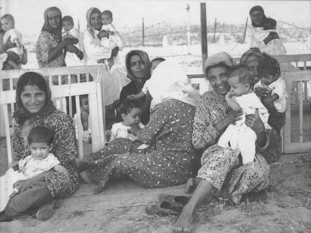 מעברת עין שמר, 9 בספטמבר 1950. צילום: פריץ כהן, לשכת העיתונות הממשלתית