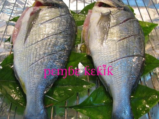 limon yaprağında ızgara çipura,limon yaprağında balık,fırın ızgarasında balık,çipura tarifi,fırında çipura tarifi
