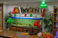 Trigent-Software-walkins-for-freshers