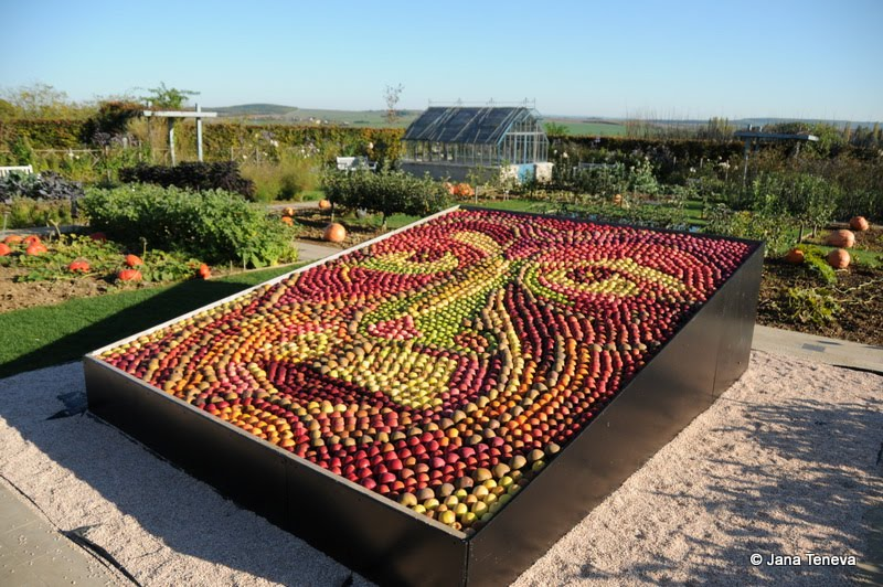 Jana around the world jardins fruitiers de laquenexy in moselle - Jardins fruitiers de laquenexy ...