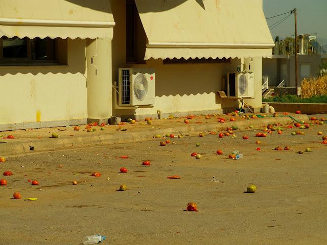 Θήβα: Πόλεμος με αυγά και ντομάτες από τους Ρομά προς τη ΔΕΗ της Θήβας