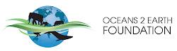 O2E Foundation logo