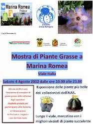 Marina Romea 2012