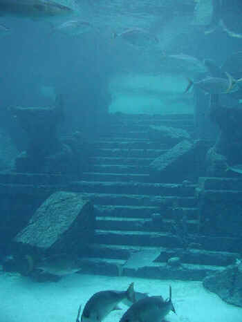 Real Underwater Ruins Are We Alone?: Picture...