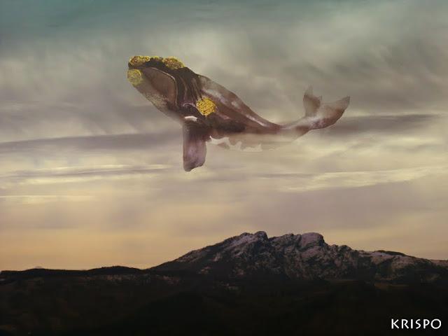 ballena sobrevolando el cielo