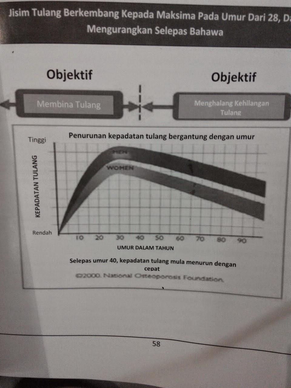 graf kalsium ostematrix