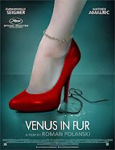 La venus de las pieles (La vénus a la fourrure) (2013)