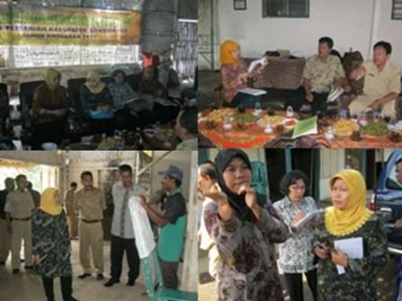Petani Indonesia Berprestasi Petani Berprestasi Buharto