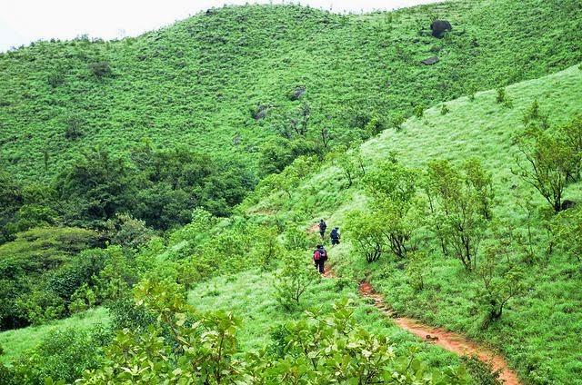 Kumara Parvatha Trek in Karnataka