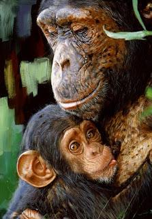 cuadros-animales
