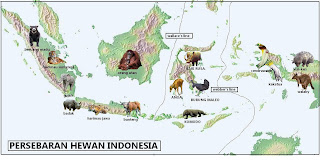 fauna tipe asiatis asiatic ciri fauna tipe asiatis yaitu hewan