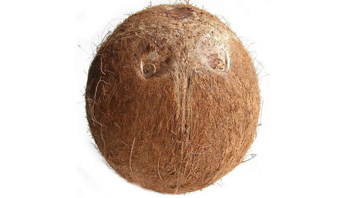 Coconut Arrested, Accused Of Black Magic