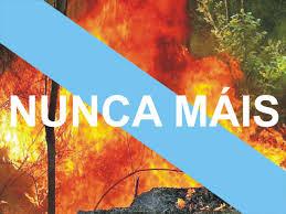 Galicia no arde: la queman