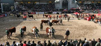 Arrancó el paro del campo contra la estatización del predio de la Rural