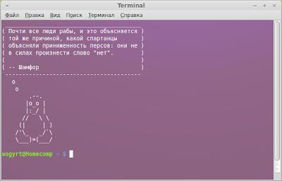 Linux терминал