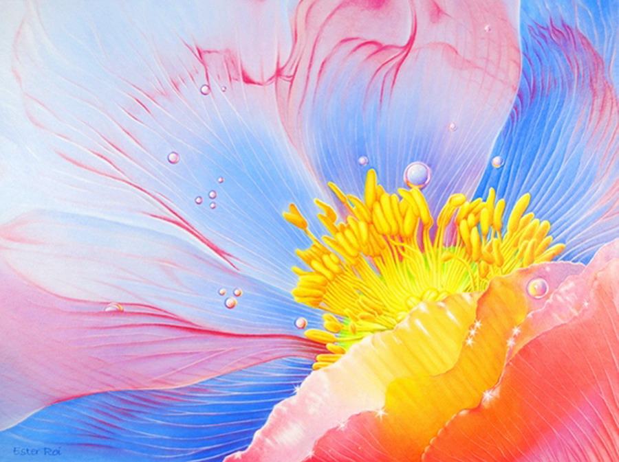 Cuadros coloridos cuadros modernos coloridos resultado for Cuadros coloridos modernos